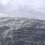 wave_v01_